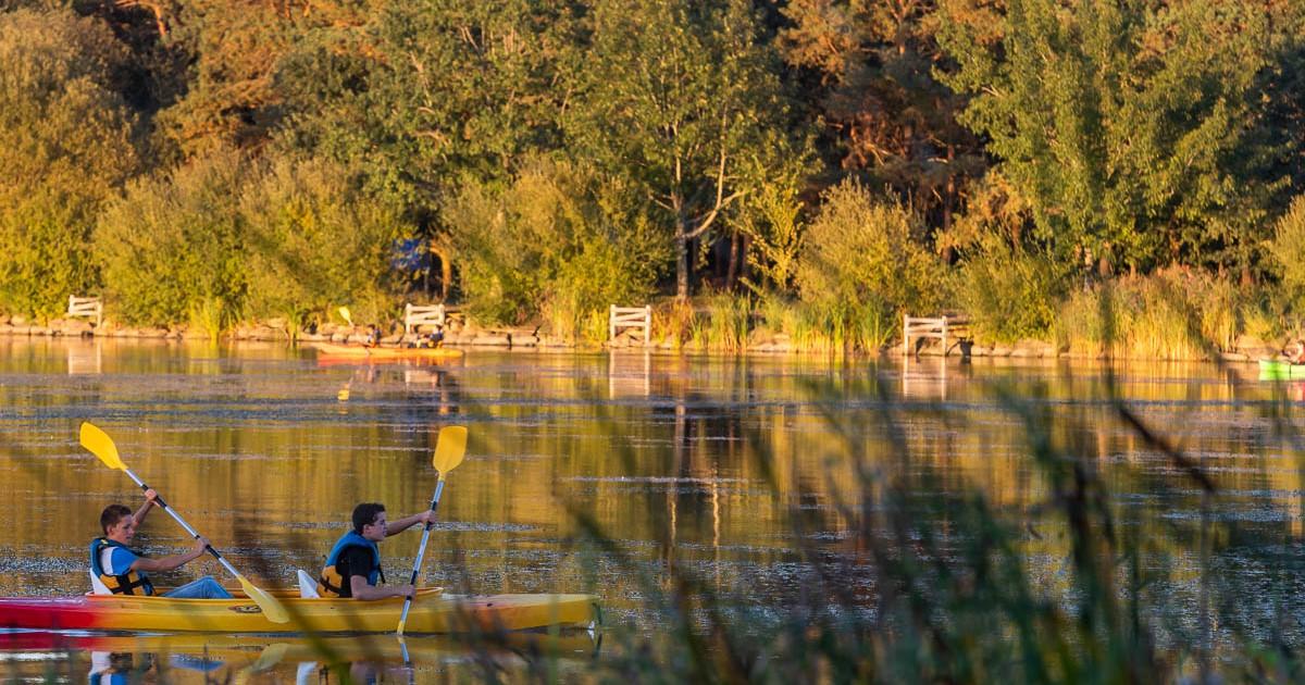 Image - lac de la Chausselière - Terres de Montaigu