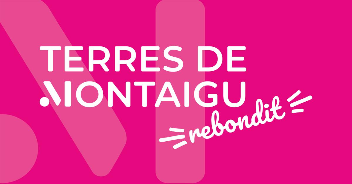 BLOC MARQUE - 2020 - Terres de Montoigu Rebondit - rose